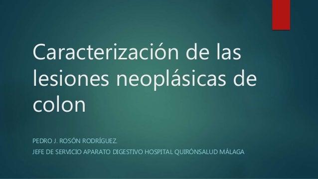 Caracterización de las lesiones neoplásicas de colon PEDRO J. ROSÓN RODRÍGUEZ. JEFE DE SERVICIO APARATO DIGESTIVO HOSPITAL...