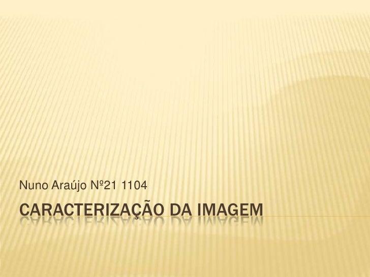 Nuno Araújo Nº21 1104CARACTERIZAÇÃO DA IMAGEM