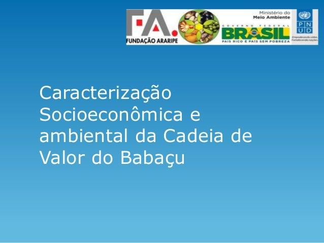Caracterização Socioeconômica e ambiental da Cadeia de Valor do Babaçu