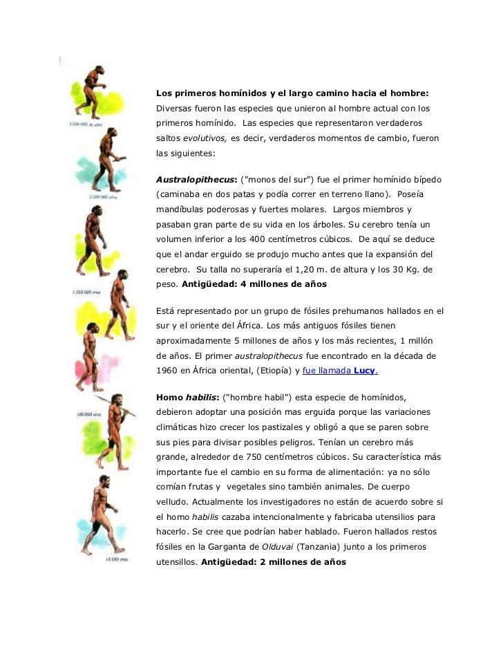 Primates - El Camino De La Obediencia