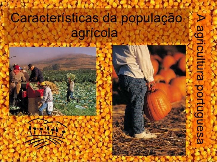 Características da população agrícola  A agricultura portuguesa