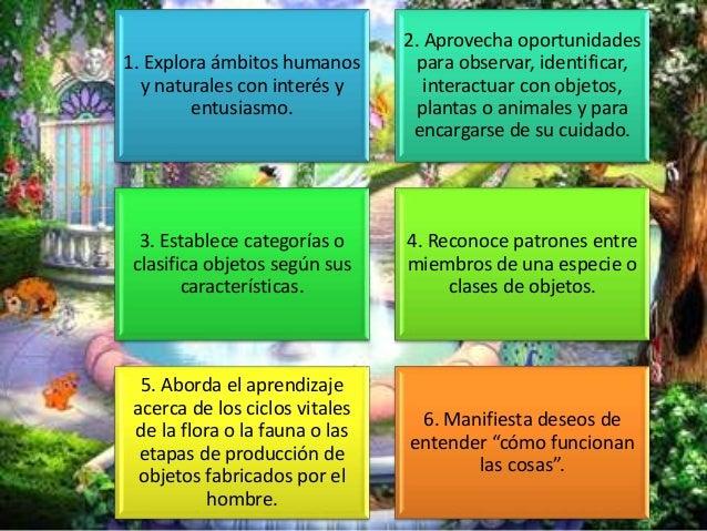 Características De Las Personas Que Poseen Inteligencia Naturalista