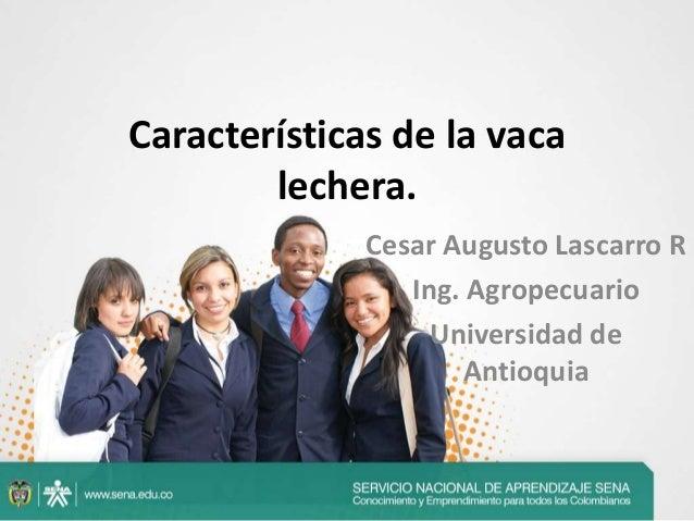 Características de la vaca lechera. Cesar Augusto Lascarro R Ing. Agropecuario Universidad de Antioquia