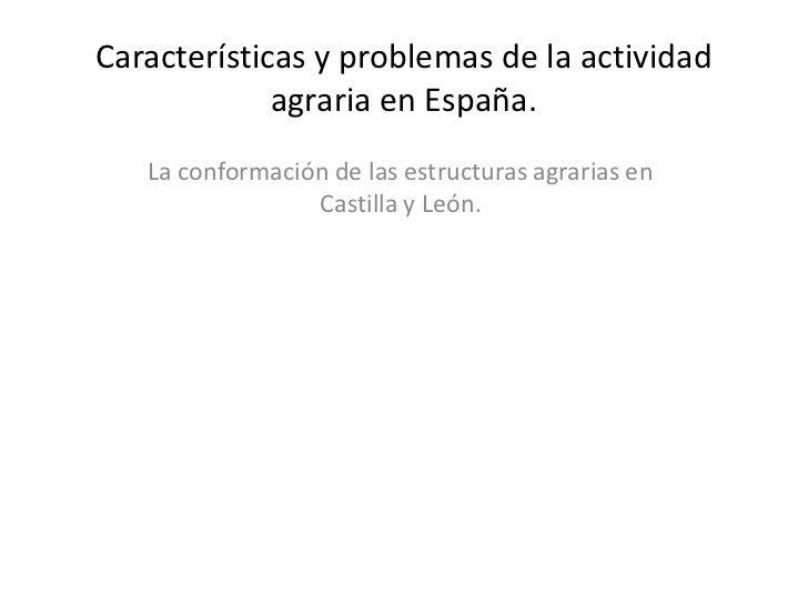 Características y problemas de la actividad agraria en España. <br />La conformación de las estructuras agrarias en Castil...