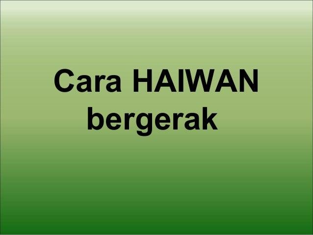 Cara HAIWANbergerak