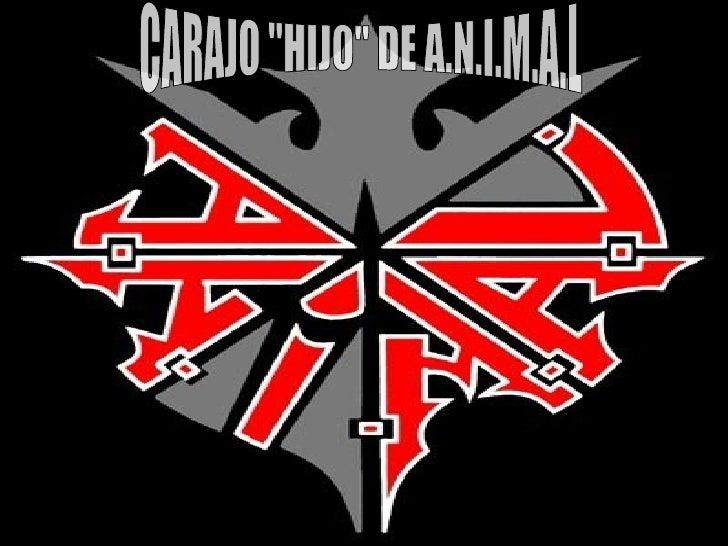 """CARAJO """"HIJO"""" DE A.N.I.M.A.L"""