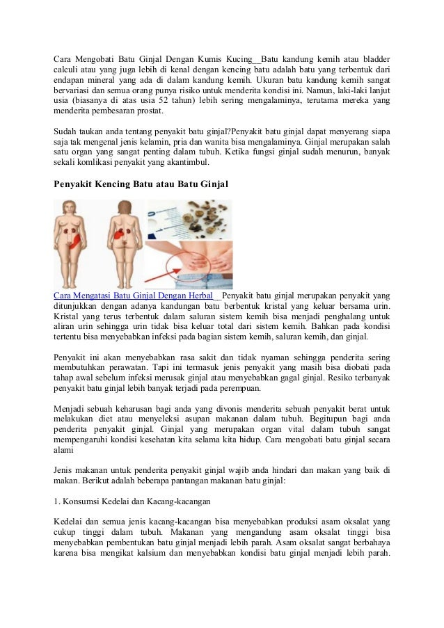 Cara Mengobati Batu Ginjal Dengan Kumis Kucing__Batu kandung kemih atau bladder calculi atau yang juga lebih di kenal deng...
