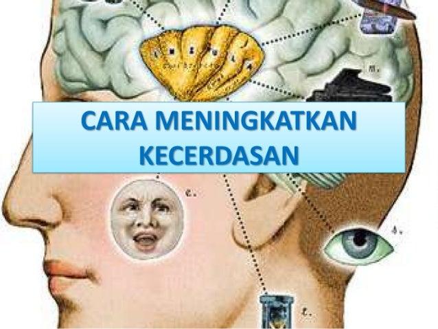 Cara meningkatkan kecerdasan