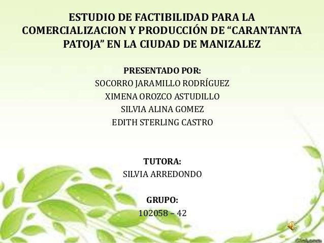 """ESTUDIO DE FACTIBILIDAD PARA LACOMERCIALIZACION Y PRODUCCIÓN DE """"CARANTANTA      PATOJA"""" EN LA CIUDAD DE MANIZALEZ        ..."""