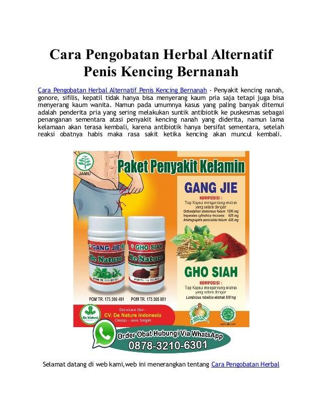 Cara Pengobatan Herbal Alternatif Penis Kencing Bernanah Cara Pengobatan Herbal Alternatif Penis Kencing Bernanah - Penyak...