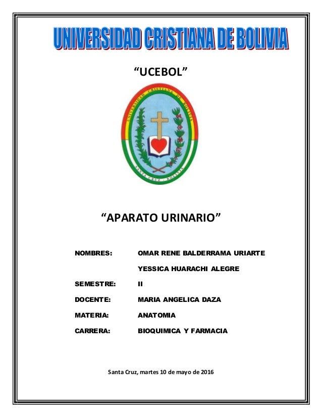"""UCEBOL"" ""APARATO URINARIO"" NOMBRES: OMAR RENE BALDERRAMA URIARTE YESSICA HUARACHI ALEGRE SEMESTRE: II DOCENTE: MARIA ANGE..."