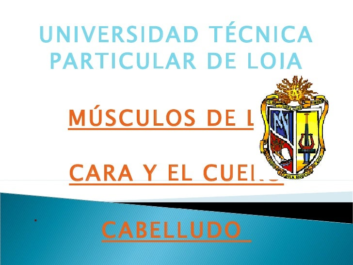 UNIVERSIDAD TÉCNICA PARTICULAR DE LOJA MÚSCULOS DE LA  CARA Y EL CUERO CABELLUDO  .