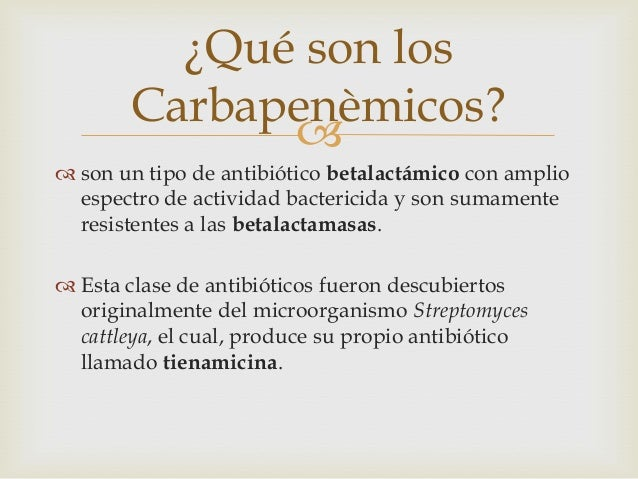 Carbapenems final for Cuales son los arboles perennes