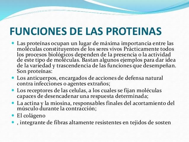 FUNCIONES DE LAS PROTEINAS  Las proteínas ocupan un lugar de máxima importancia entre las moléculas constituyentes de los...