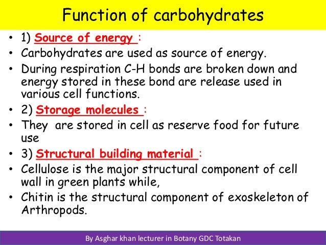 carbohdrates, Human body