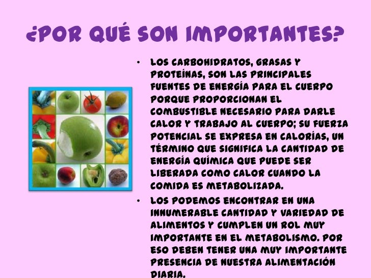 Carbohidratos for Porque son importantes los arboles wikipedia