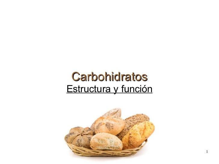 Carbohidratos Estructura y función