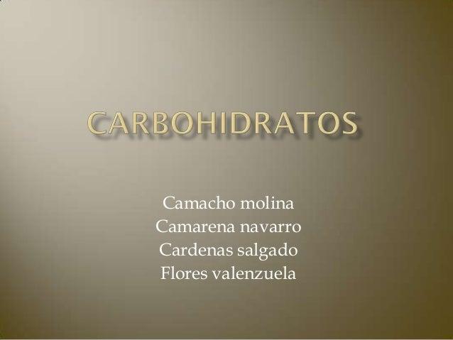 Camacho molinaCamarena navarroCardenas salgadoFlores valenzuela