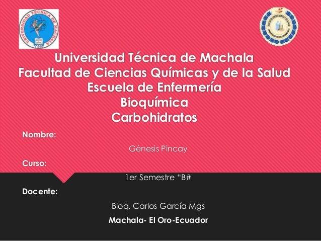 Universidad Técnica de Machala Facultad de Ciencias Químicas y de la Salud Escuela de Enfermería Bioquímica Carbohidratos ...