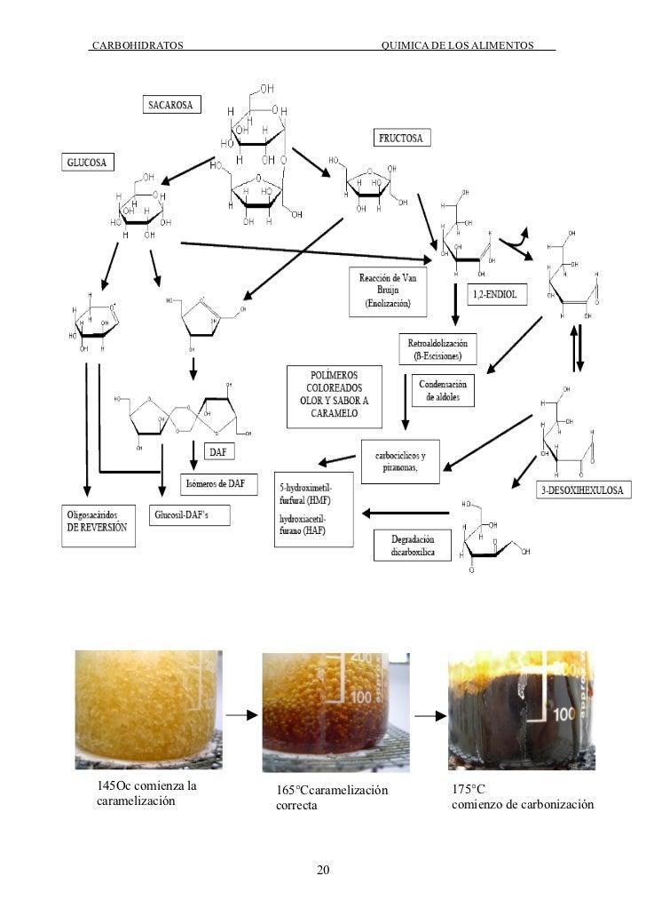 Carbohidratos en la quimica de los alimentos for Quimica de los alimentos pdf