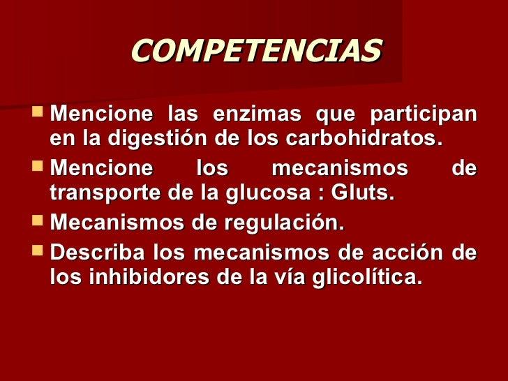 Carbohidratos I (bioquimica) Slide 2