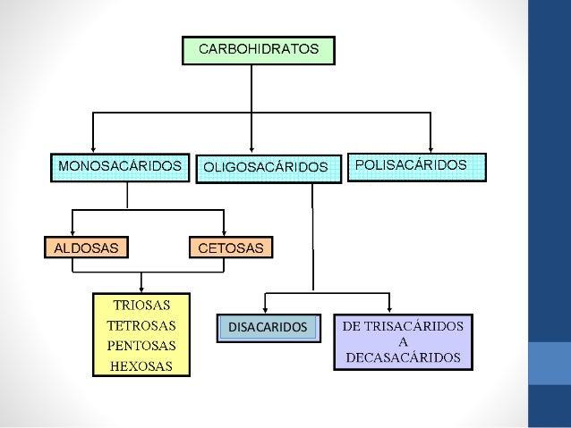 Clasificacion de los hidratos carbono yahoo dating 4