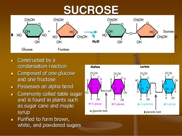 Carbohydrate - New World Encyclopedia