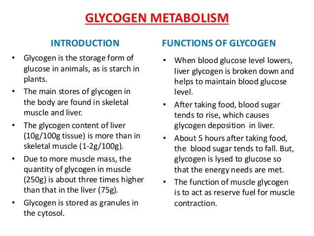 Carbohydrate metabolism b.pharm