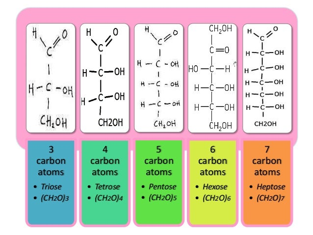 Carbohydrates - ...D Galactose