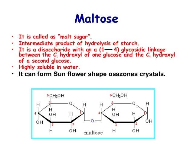 Metabolism of Carbohydrates  Metabolism of C...