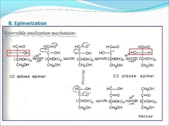 Carbohydrates and structural analysis of polysaccharides