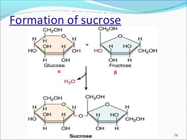 structural polysaccharides Just as name indicates, storage polysaccharides are polysaccharides that stores glucose (like starch and glycogen) while structural polysaccharides are polysaccharides that form the structure of.