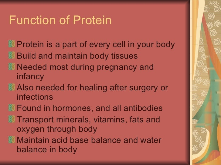 carbohydrates, fats, and proteins, Human Body