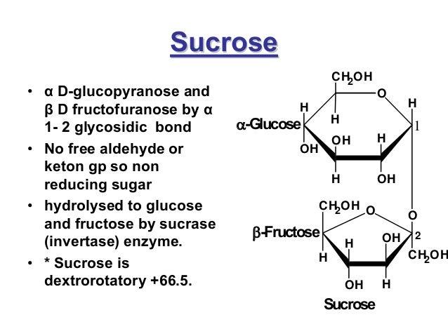 reducing and nonreducing sugars