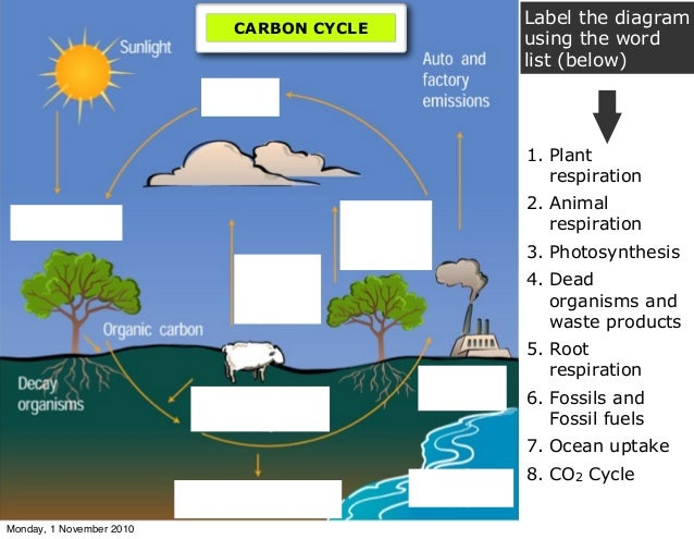 Carbon chemistry label the diagram ccuart Choice Image