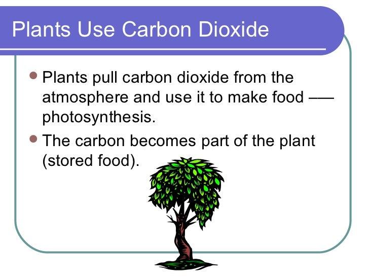 Carbon cycle 4 plants use carbon sciox Images