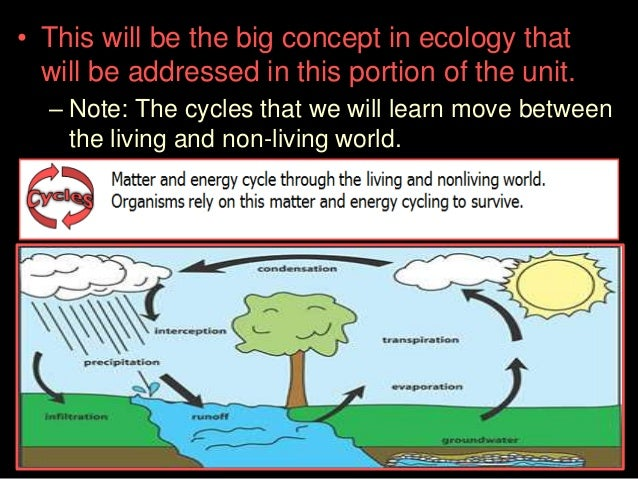 Carbon Cycle Lesson PowerPoint Biogeochemical Cycles – Carbon Cycle Worksheet High School