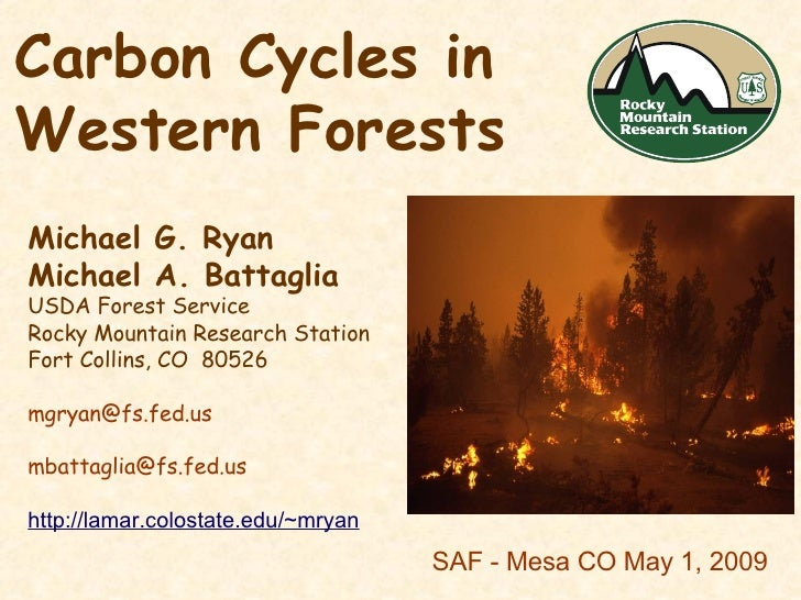 Carbon Cycles in Western Forests  Michael G. Ryan Michael A. Battaglia USDA Forest Service Rocky Mountain Research Station...