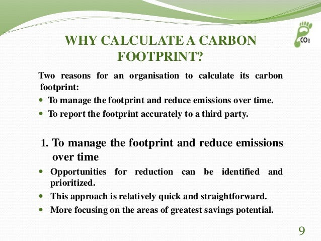 essays on carbon footprint