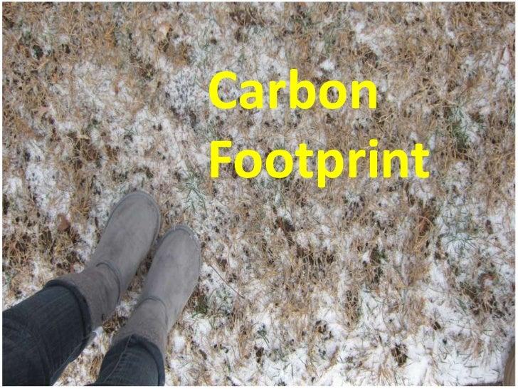 CarbonFootprint<br />