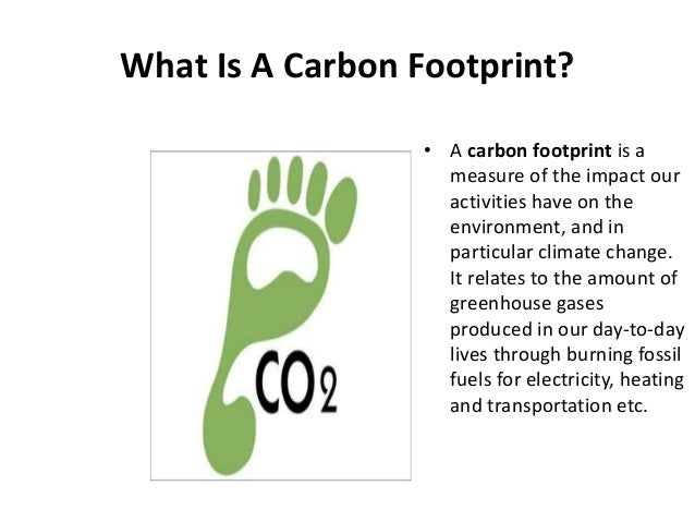 ecological footprint essay introduction Free essay: the term carbon footprint ecological footprint essay depth analysis of the carbon emissions of the popular water company- introduction.