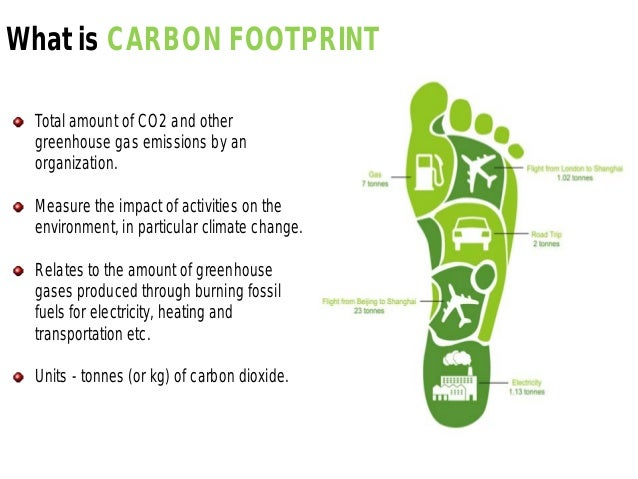 role of carbon credits and carbon footprints in the middle east Carbon footprint is the foremost indicator of environmental responsibility and helps to identify climate impacts and lower them cost-effectively by strategic the world's dependence on middle east energy resources has caused the region to have some of the largest carbon footprints per capita worldwide.