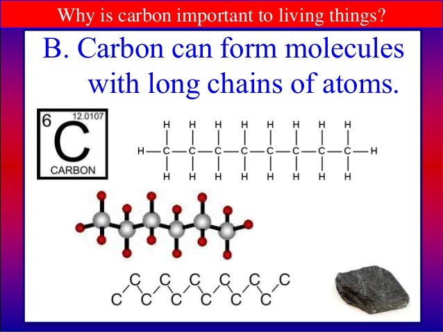 Why is carbon dating important