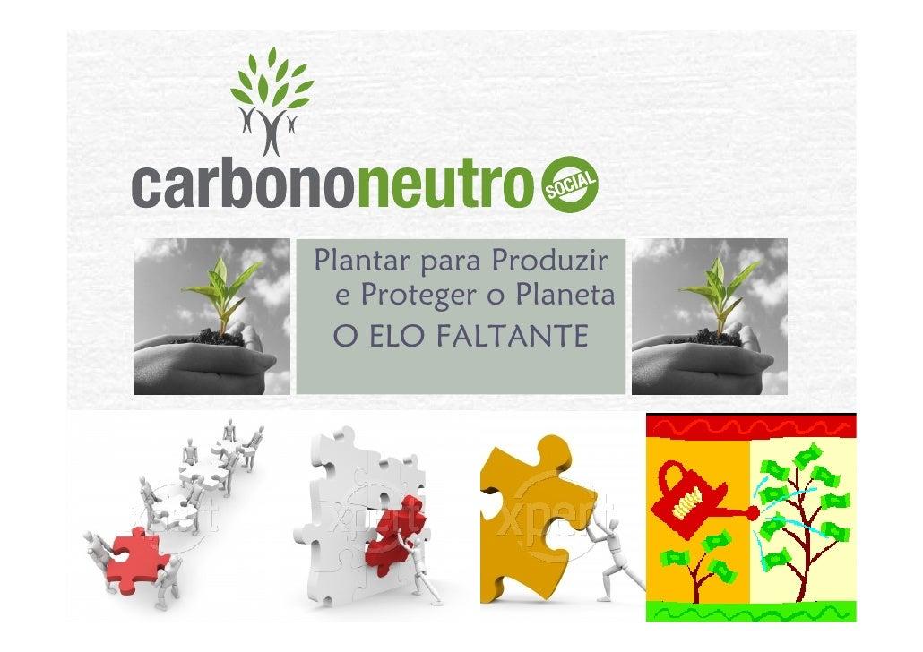 Plantar para Produzir   e Proteger o Planeta  O ELO FALTANTE