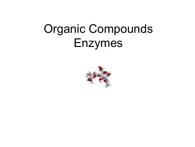 Organic Compounds Enzymes