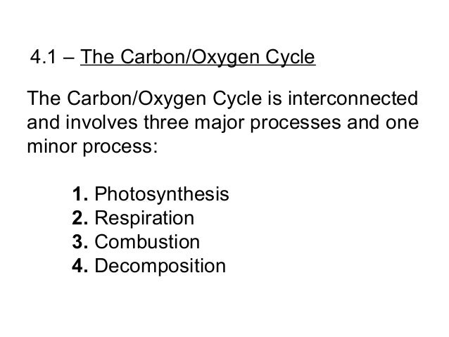 the oxygen carbon cycle essay The third layer to understanding and teaching about the carbon cycle is to   carbohydrate (c6h12o6) + oxygen (o2) - carbon dioxide (co2) + water (h2o ).