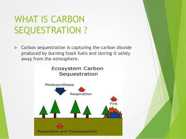 Carbon sequestration in soils for 0 4 soil carbon