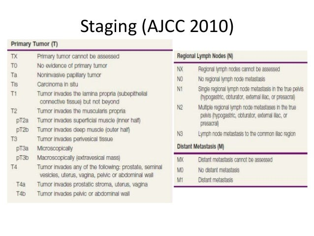 Carcinoma bladder Slide 2