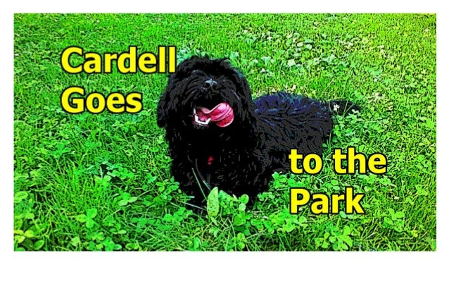 Cardell Goes To The Park © 2015 Joe Ditzel All Rights Reserved