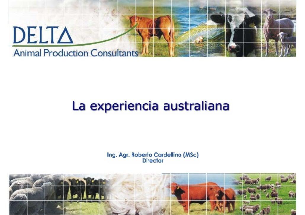 Australia : fuente de material genético de Merino